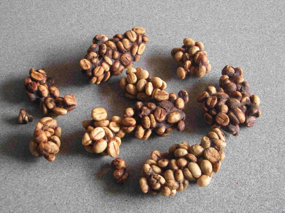 Kopi-Luwak-Indonesia-coffee-bean