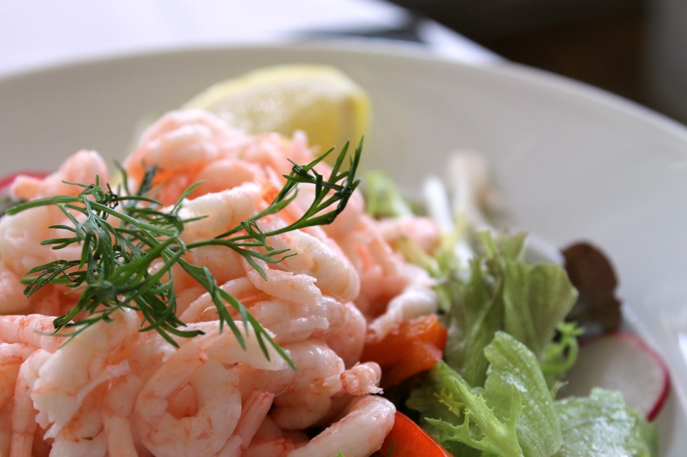 shrimp-salad-833214_1920
