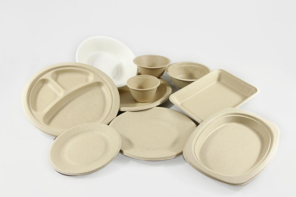 o25a desechables biodegradables 1 cortesía